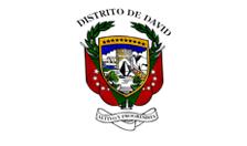 Municipio de David